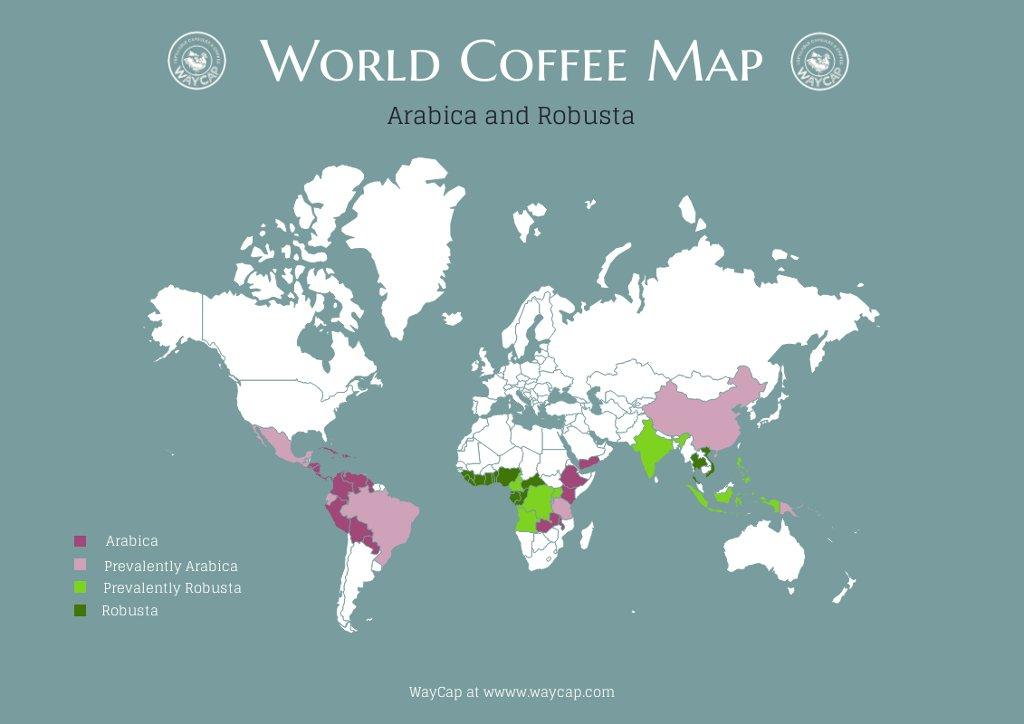 the-coffee-belt